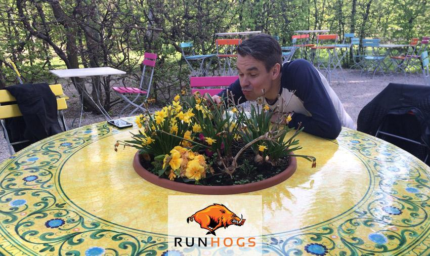runhogs-294